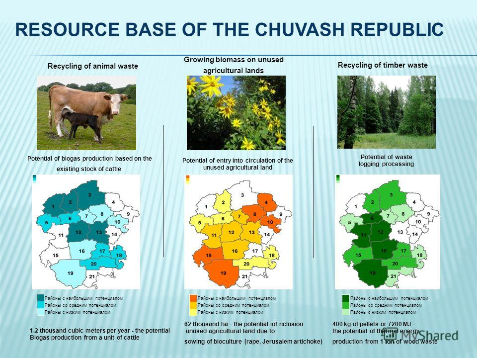 RESOURCE BASE OF THE CHUVASH REPUBLIC Potential of biogas production based on the existing stock of cattle Potential of entry into circulation of the unused agricultural land Potential of waste logging processing Районы с наибольшим потенциалом Район