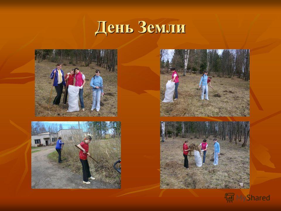85 лет Ленинградской области