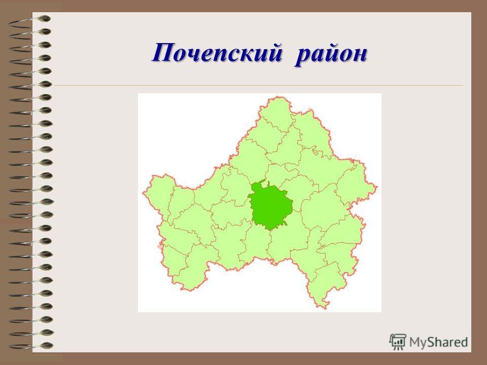 Почепский район