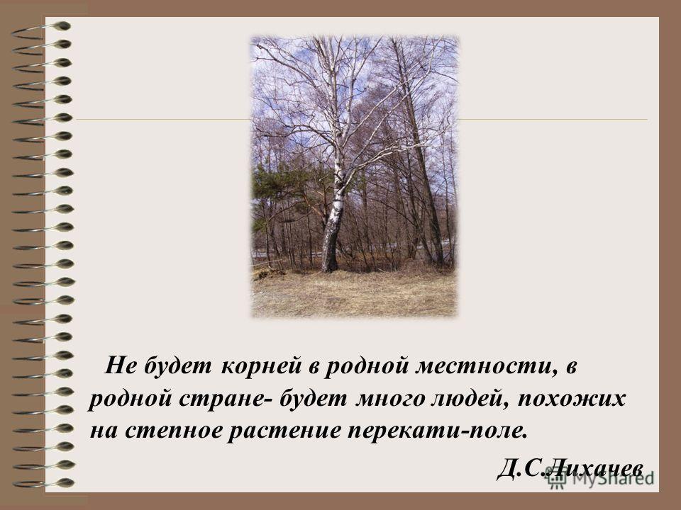 Не будет корней в родной местности, в родной стране- будет много людей, похожих на степное растение перекати-поле. Д.С.Лихачев