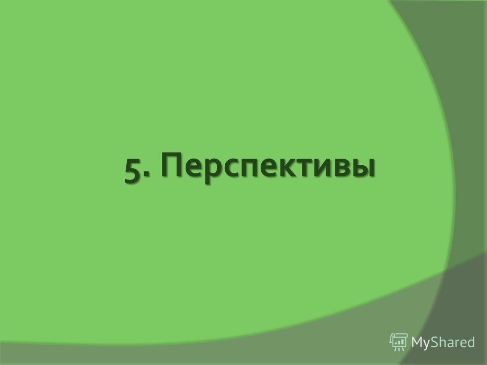 5. Перспективы