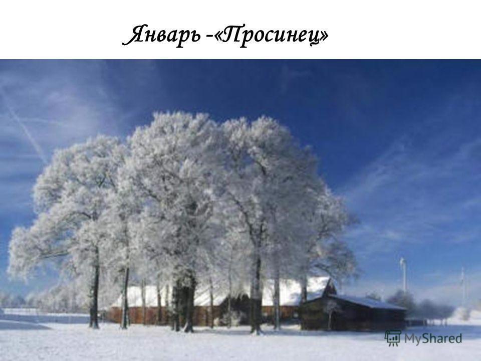 Приметы декабря В декабре мороз нарастает, зато день убывает. Дым из трубы стелется до земли без ветра – к снегу. Дым из трубы столбом – к морозу. Кошка морду лапой закрывает – к метели. В конце декабря солнце на лето, зима на мороз поворачивает. В д