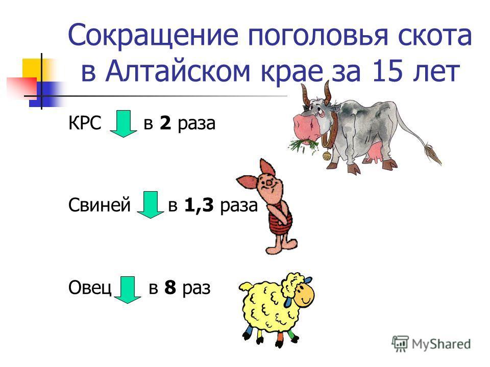 Сокращение поголовья скота в Алтайском крае за 15 лет КРС в 2 раза Свиней в 1,3 раза Овец в 8 раз