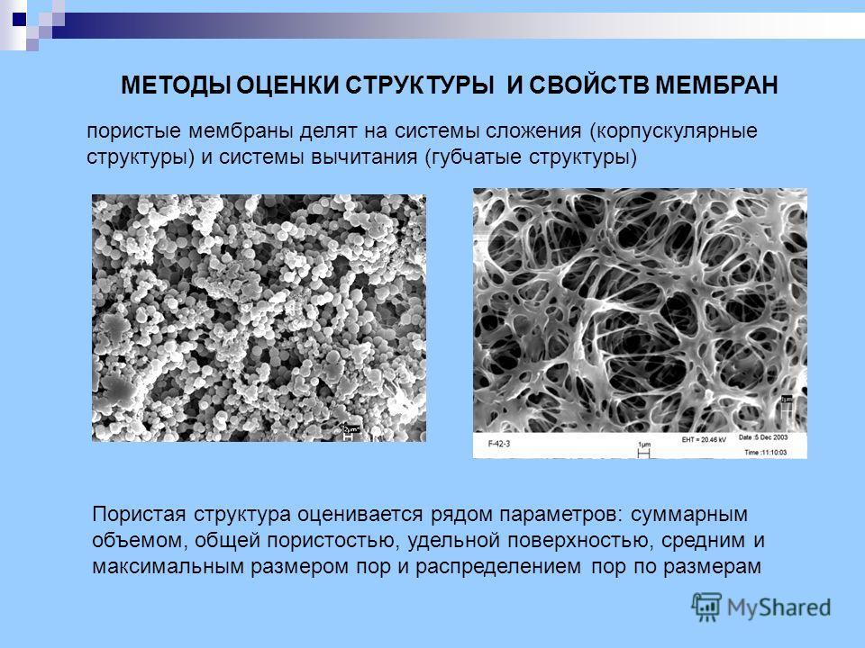 МЕТОДЫ ОЦЕНКИ СТРУКТУРЫ И СВОЙСТВ МЕМБРАН пористые мембраны делят на системы сложения (корпускулярные структуры) и системы вычитания (губчатые структуры) Пористая структура оценивается рядом параметров: суммарным объемом, общей пористостью, удельной