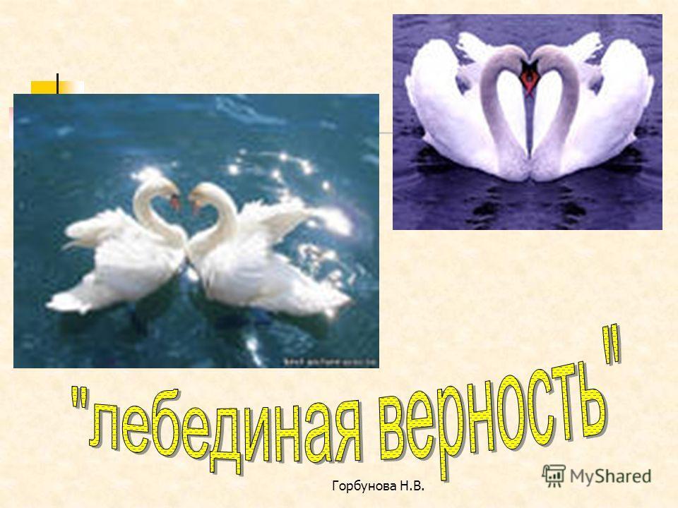 Горбунова Н.В.