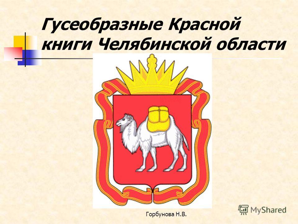 Гусеобразные Красной книги Челябинской области