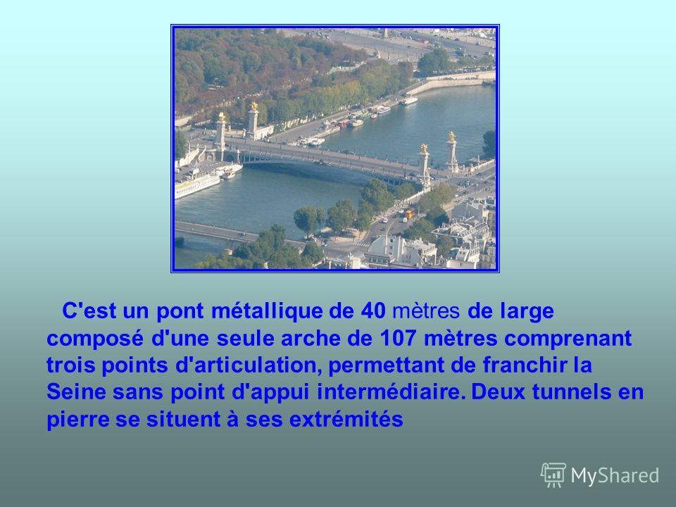 C'est un pont métallique de 40 mètres de large composé d'une seule arche de 107 mètres comprenant trois points d'articulation, permettant de franchir la Seine sans point d'appui intermédiaire. Deux tunnels en pierre se situent à ses extrémités
