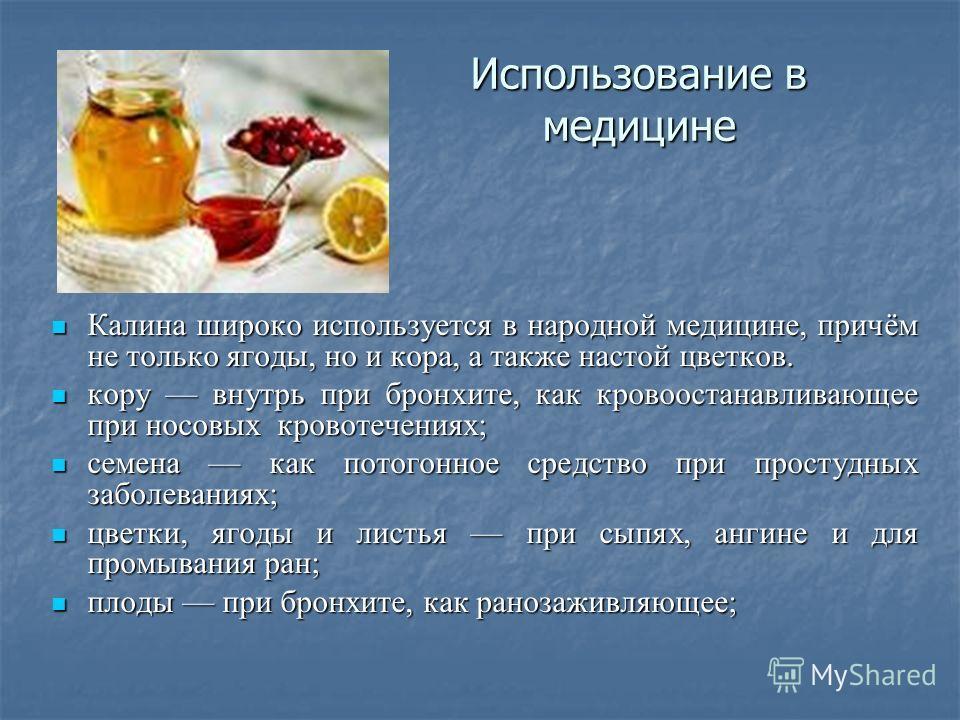 Использование в медицине Калина широко используется в народной медицине, причём не только ягоды, но и кора, а также настой цветков. Калина широко используется в народной медицине, причём не только ягоды, но и кора, а также настой цветков. кору внутрь