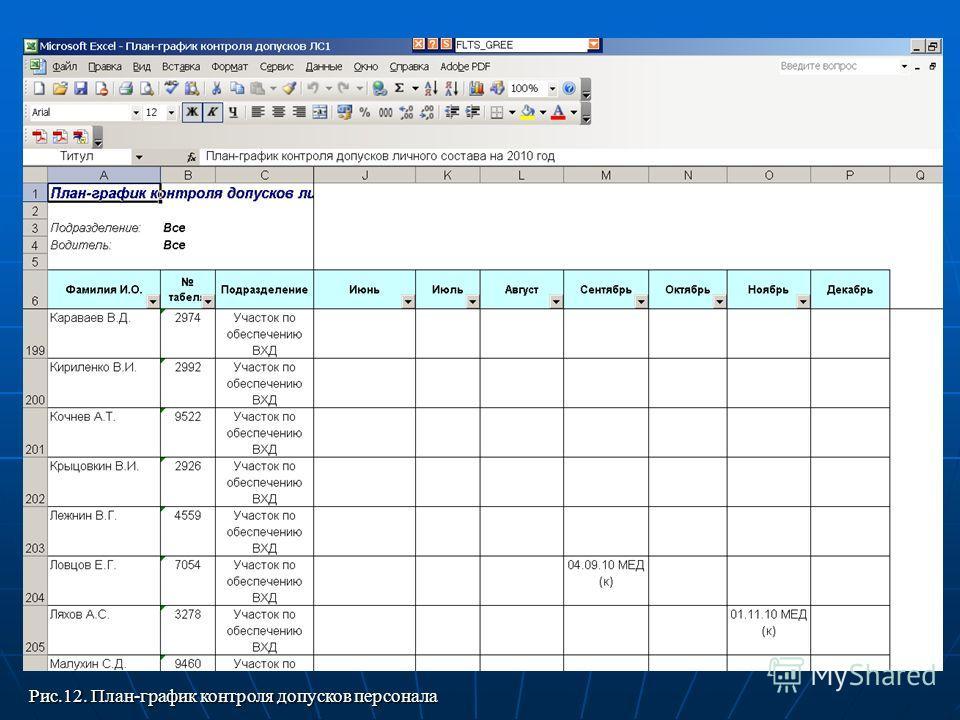 Рис.12. План-график контроля допусков персонала