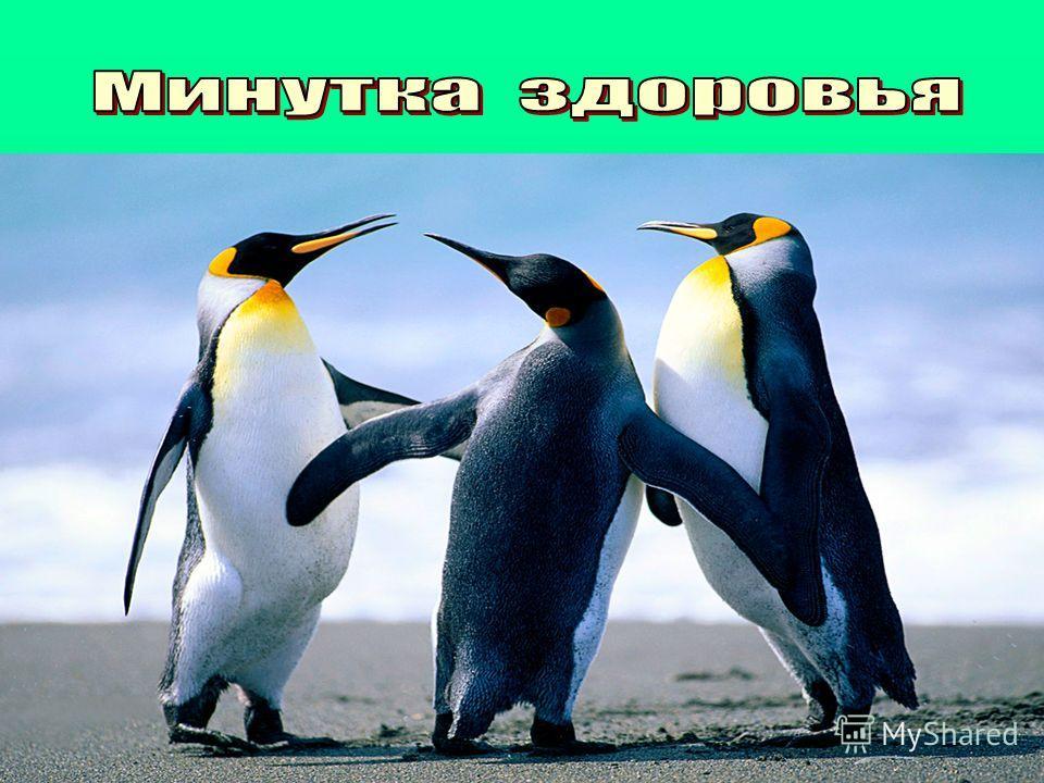 Доброе утро, здравствуй, Иван, Доброе утро, здравствуй, Степан, Доброе утро, здравствуй, Сергей, Доброе утро, здравствуй, Андрей, Доброе утро, здравствуй, Антон. Пальчиковая гимнастика