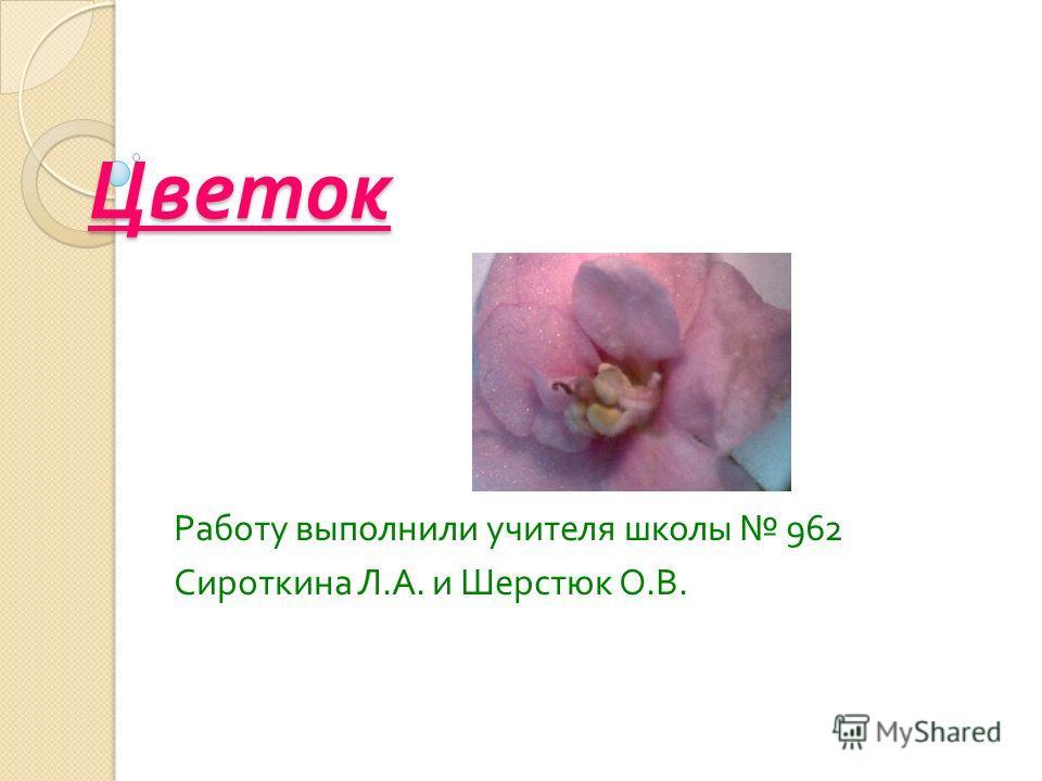 Цветок Работу выполнили учителя школы 962 Сироткина Л. А. и Шерстюк О. В.