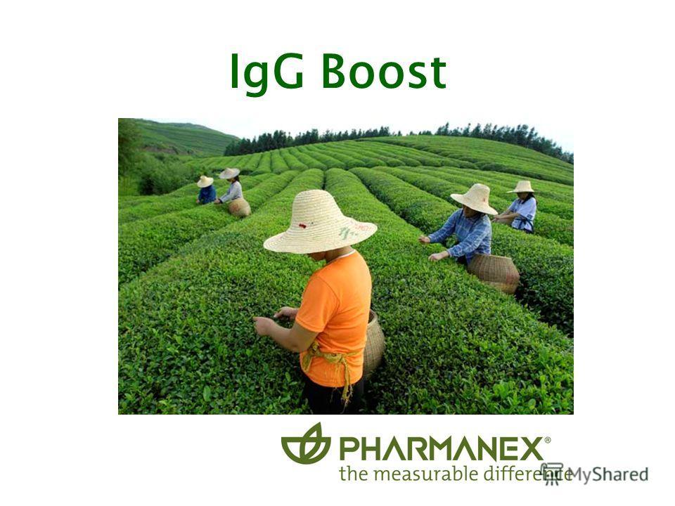 IgG Boost