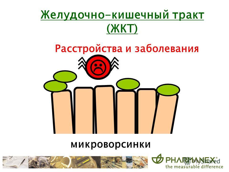 микроворсинки Расстройства и заболевания Желудочно-кишечный тракт (ЖКТ)