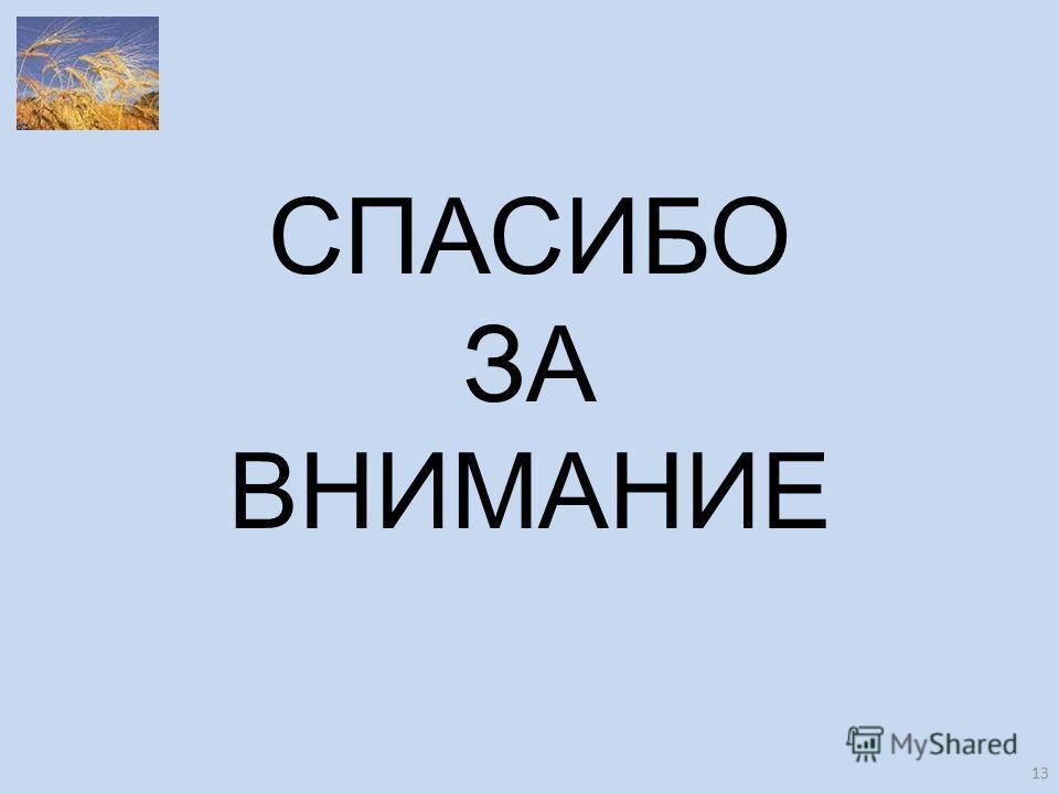 СПАСИБО ЗА ВНИМАНИЕ 13