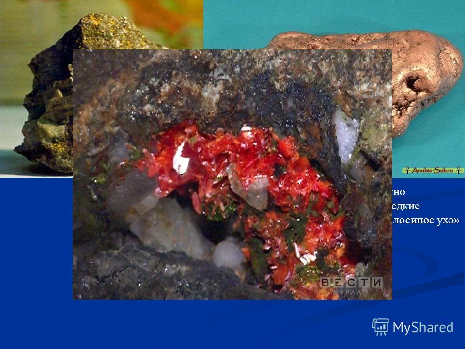 На нижних ярусах, можно обнаружить наиболее редкие минералы, например, « лосиное ухо»