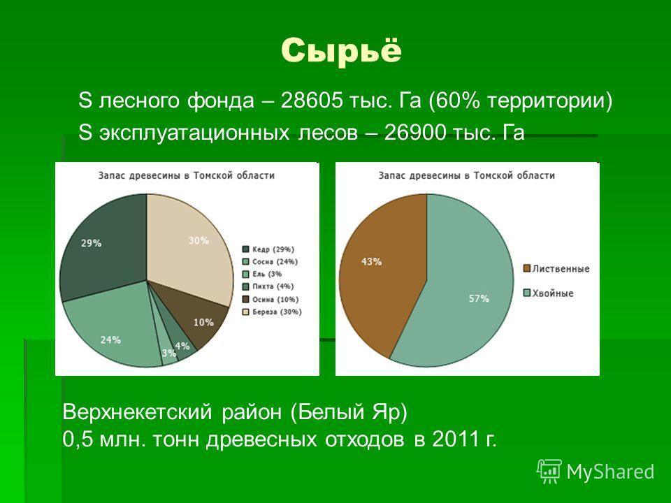Сырьё S лесного фонда – 28605 тыс. Га (60% территории) S эксплуатационных лесов – 26900 тыс. Га Верхнекетский район (Белый Яр) 0,5 млн. тонн древесных отходов в 2011 г.