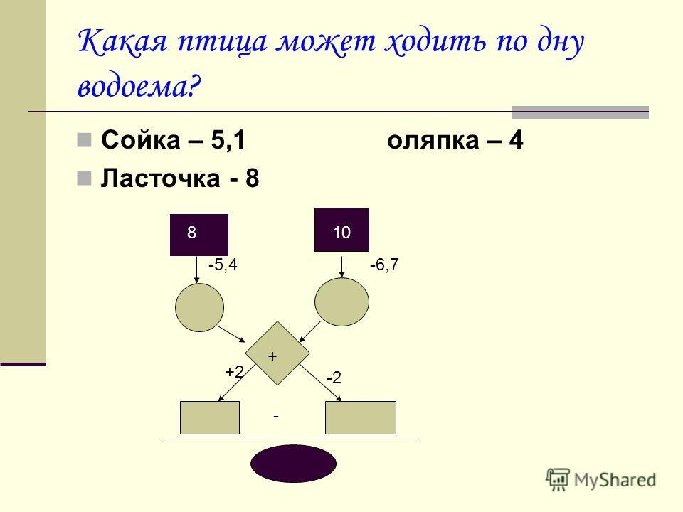 Какая птица может ходить по дну водоема? Сойка – 5,1 оляпка – 4 Ласточка - 8 810 - + -5,4-6,7 +2 -2