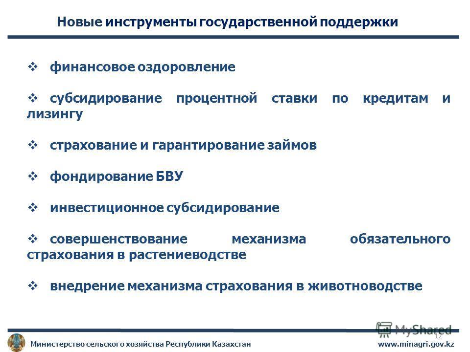www.minagri.gov.kz Министерство сельского хозяйства Республики Казахстан Новые инструменты государственной поддержки финансовое оздоровление субсидирование процентной ставки по кредитам и лизингу страхование и гарантирование займов фондирование БВУ и