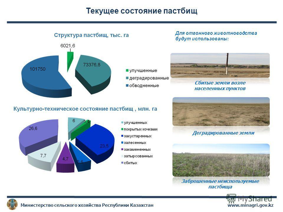 Текущее состояние пастбищ www.minagri.gov.kzМинистерство сельского хозяйства Республики Казахстан Заброшенные неиспользуемые пастбища Сбитые земли возле населенных пунктов Деградированные земли Для отгонного животноводства будут использованы: