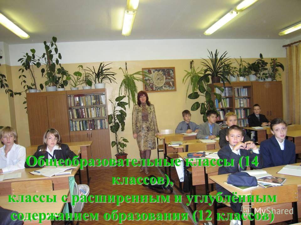 Общеобразовательные классы (14 классов), классы с расширенным и углублённым содержанием образования (12 классов)
