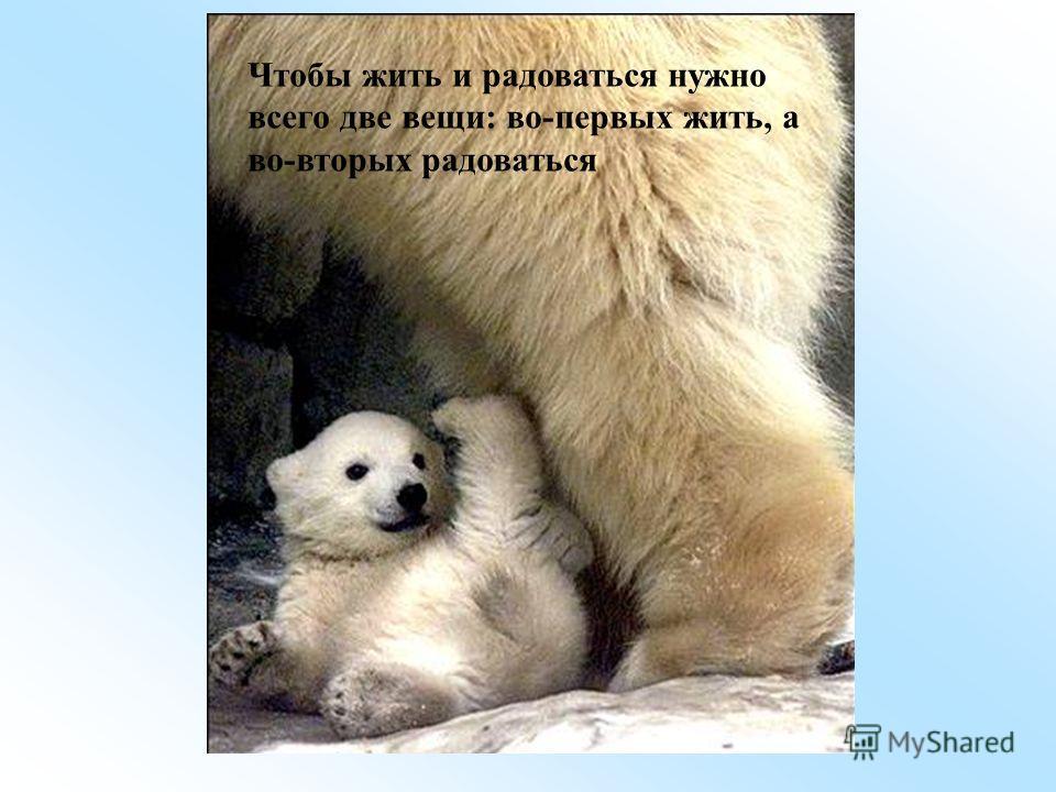 Чтобы жить и радоваться нужно всего две вещи: во-первых жить, а во-вторых радоваться