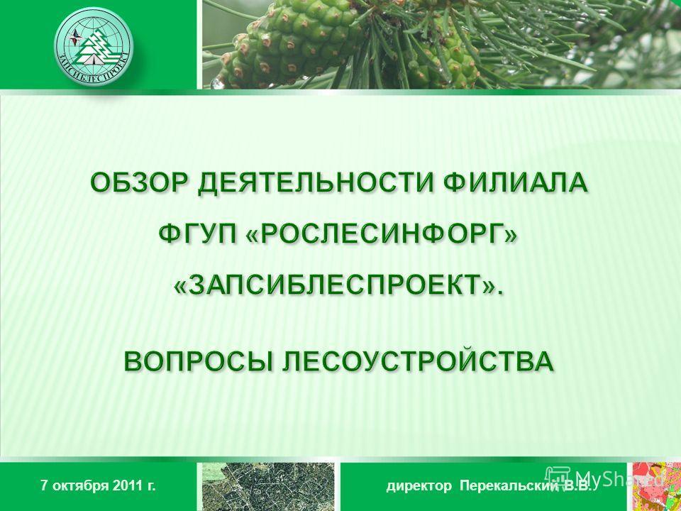 директор Перекальский В.В.7 октября 2011 г.