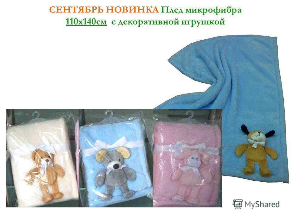 СЕНТЯБРЬ НОВИНКА Плед микрофибра 110х140см с декоративной игрушкой