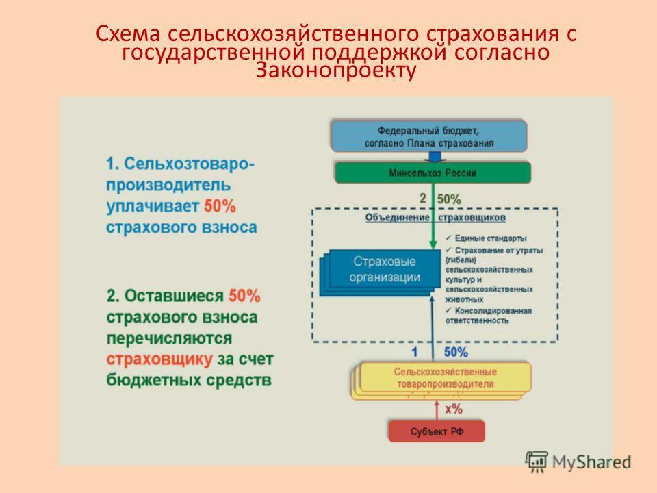Схема сельскохозяйственного страхования с государственной поддержкой согласно Законопроекту