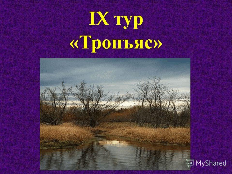 IX тур « Тропъяс »