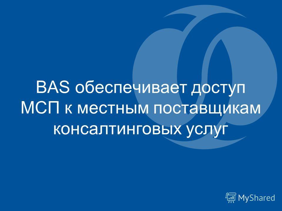 BAS обеспечивает доступ МСП к местным поставщикам консалтинговых услуг