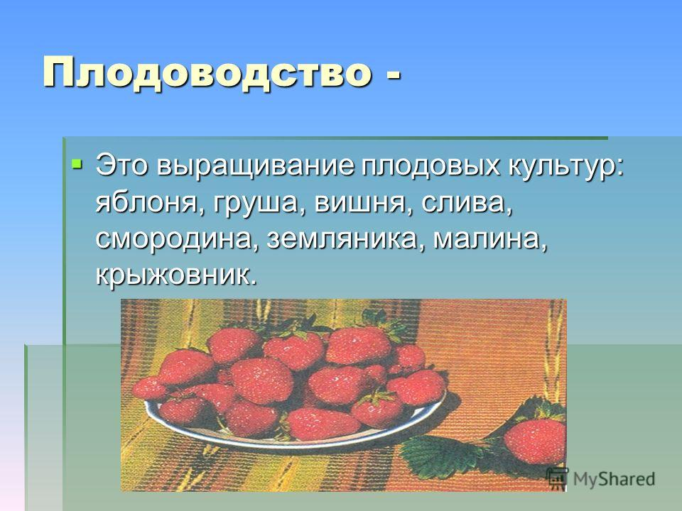 Плодоводство - Это выращивание плодовых культур: яблоня, груша, вишня, слива, смородина, земляника, малина, крыжовник. Это выращивание плодовых культур: яблоня, груша, вишня, слива, смородина, земляника, малина, крыжовник.