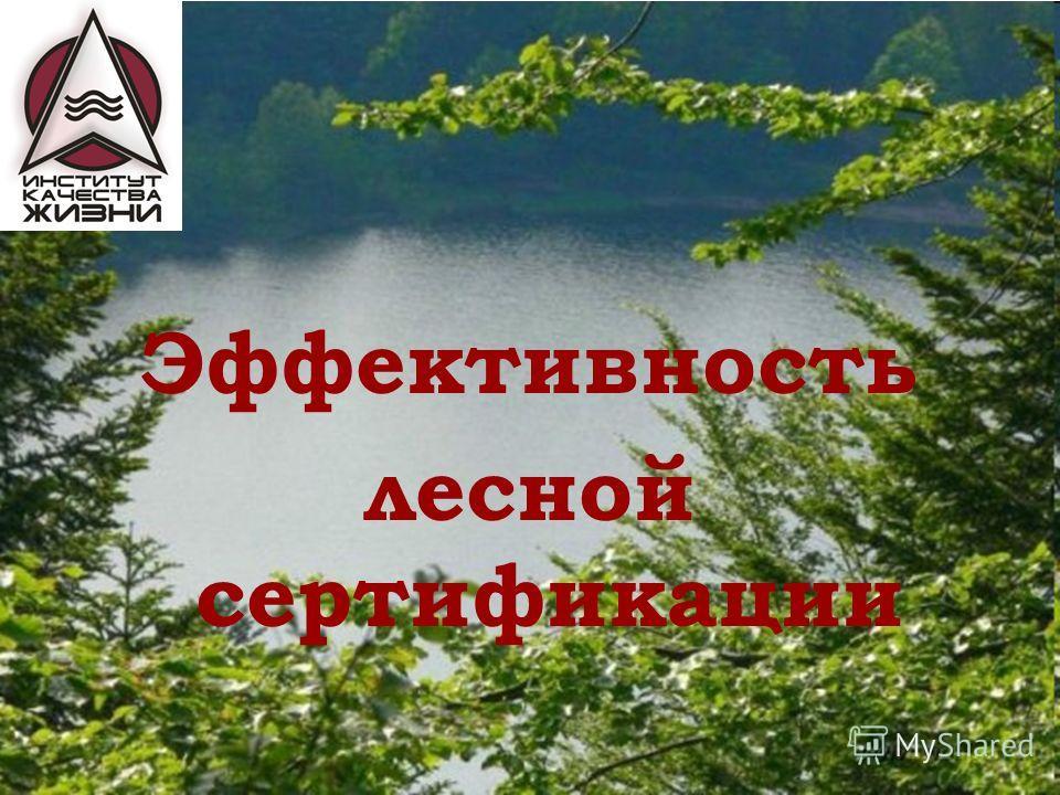 Эффективность лесной сертификации