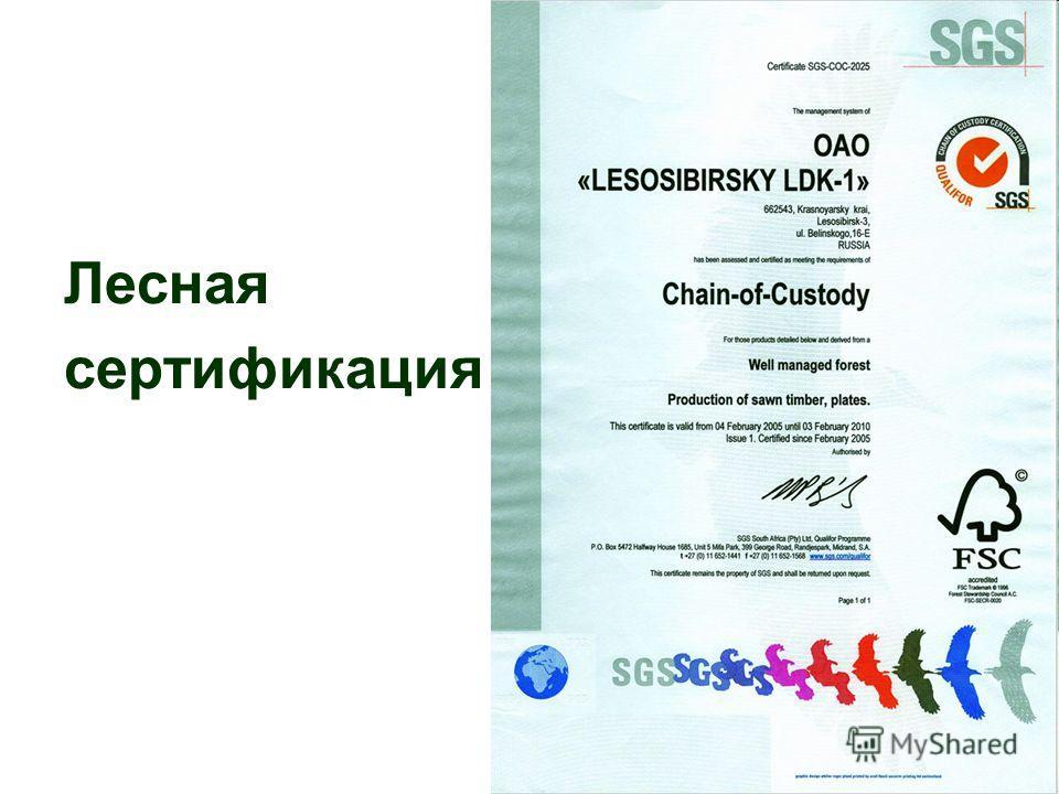 Лесная сертификация