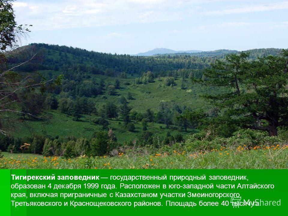 Тигирекский заповедник государственный природный заповедник, образован 4 декабря 1999 года. Расположен в юго-западной части Алтайского края, включая приграничные с Казахстаном участки Змеиногорского, Третьяковского и Краснощековского районов. Площадь