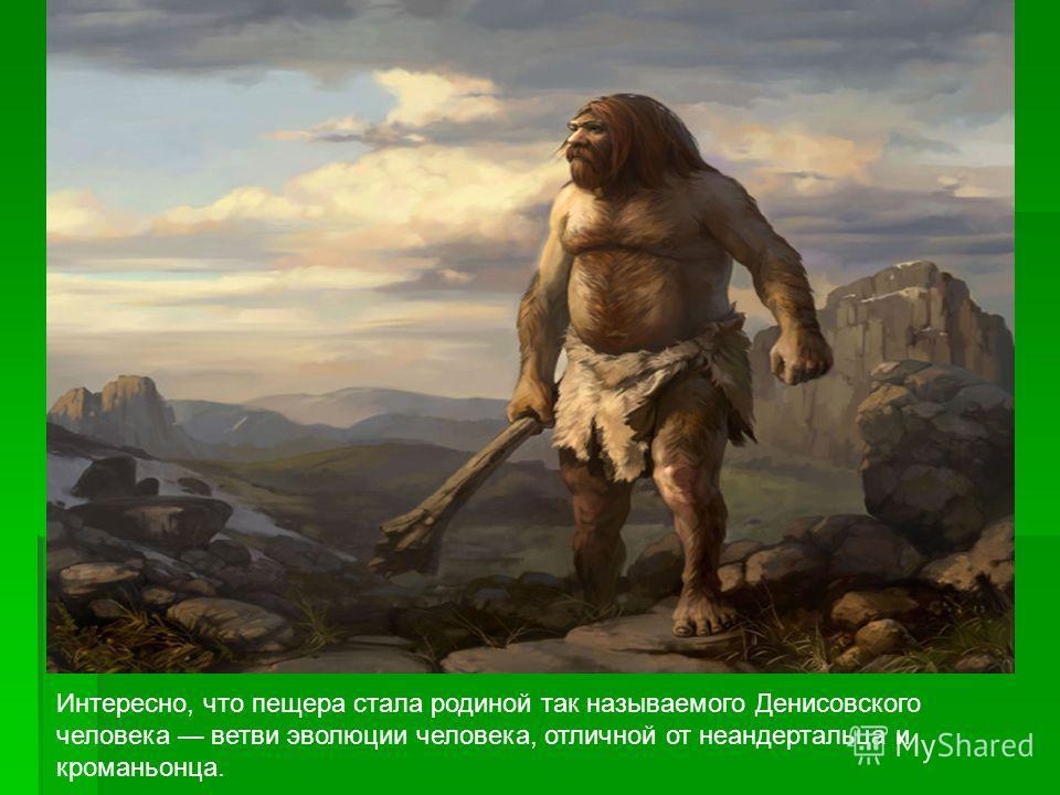 Интересно, что пещера стала родиной так называемого Денисовского человека ветви эволюции человека, отличной от неандертальца и кроманьонца.