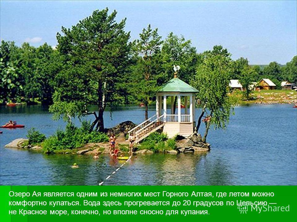 Озеро Ая является одним из немногих мест Горного Алтая, где летом можно комфортно купаться. Вода здесь прогревается до 20 градусов по Цельсию не Красное море, конечно, но вполне сносно для купания.