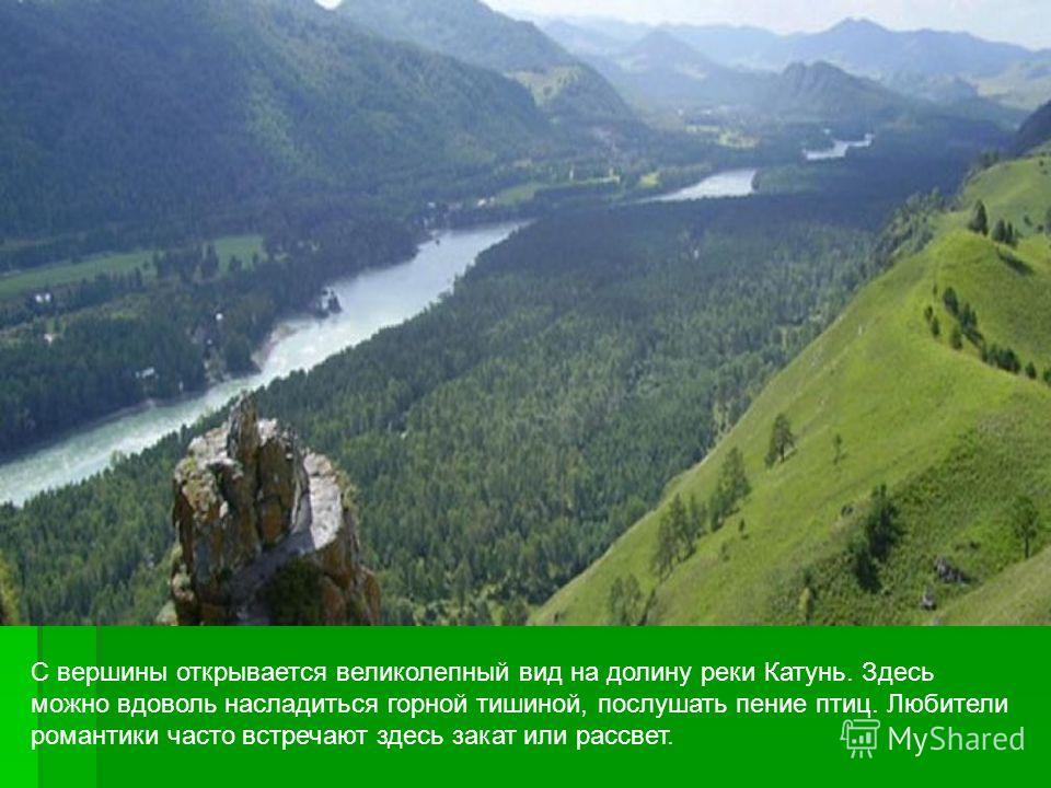 С вершины открывается великолепный вид на долину реки Катунь. Здесь можно вдоволь насладиться горной тишиной, послушать пение птиц. Любители романтики часто встречают здесь закат или рассвет.