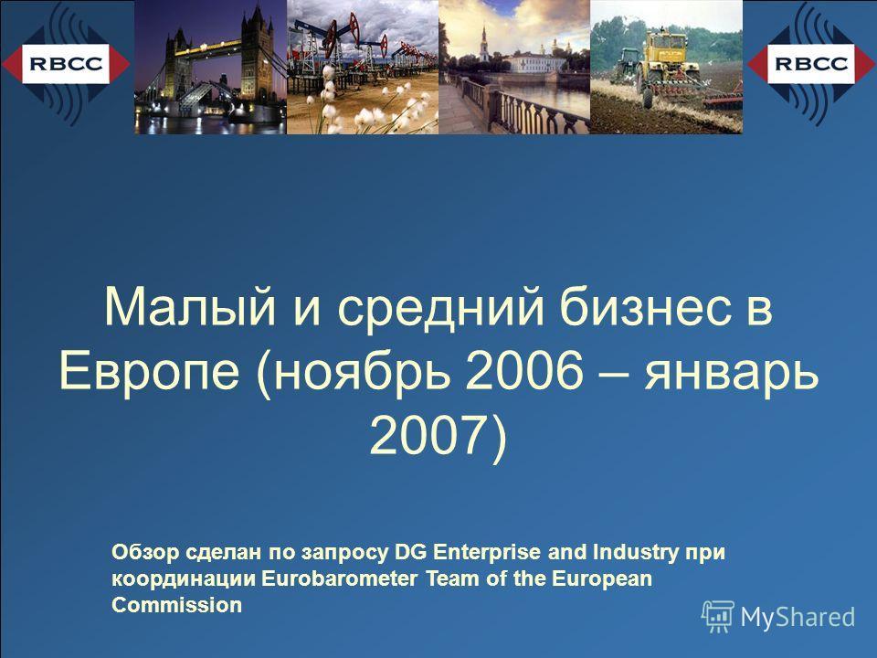 Малый и средний бизнес в Европе (ноябрь 2006 – январь 2007) Обзор сделан по запросу DG Enterprise and Industry при координации Eurobarometer Team of the European Commission