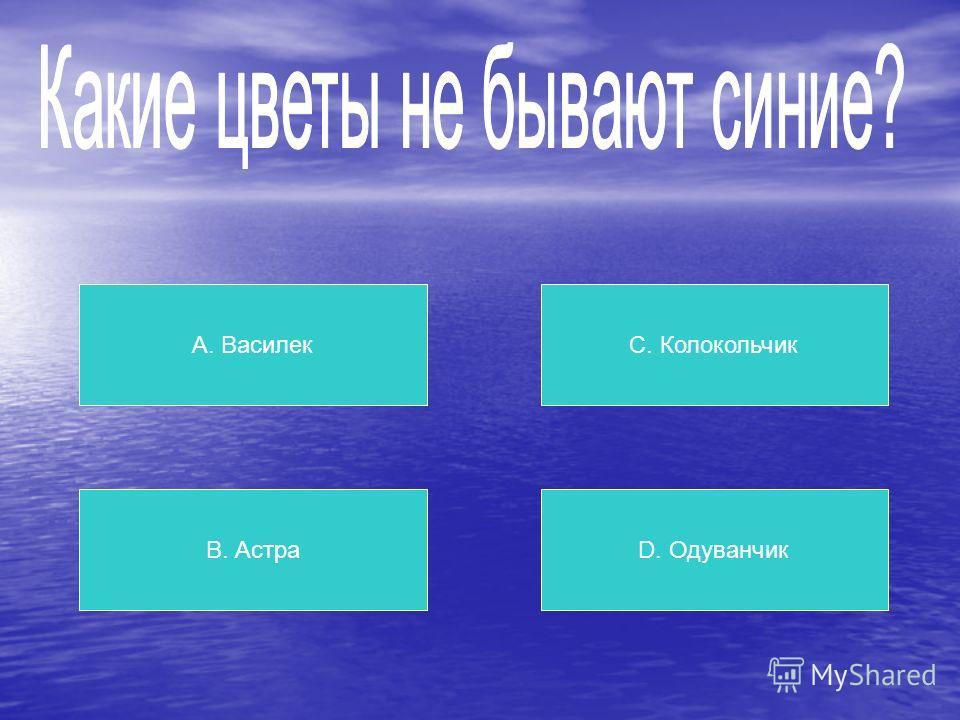 А. «Шуруп» В. «Гвоздь» С. «Винт» D. «Дюбель»