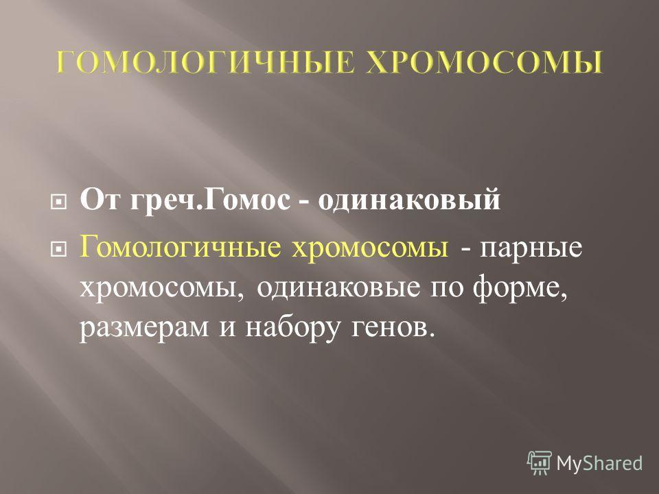 От греч. Гомос - одинаковый Гомологичные хромосомы - парные хромосомы, одинаковые по форме, размерам и набору генов.