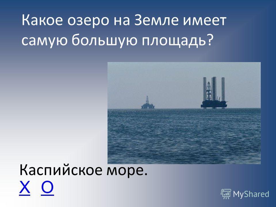 Какое озеро на Земле имеет самую большую площадь? Каспийское море. ХО