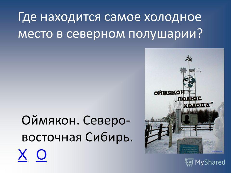 Где находится самое холодное место в северном полушарии? Оймякон. Северо- восточная Сибирь. ХО