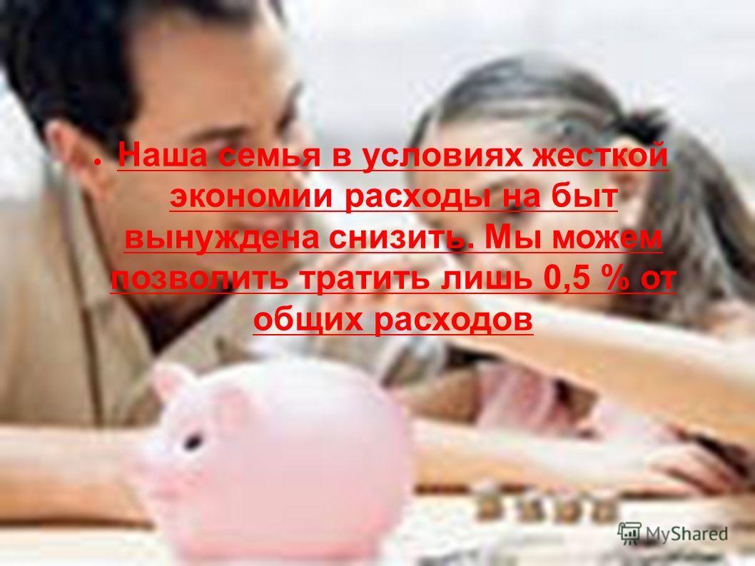 Наша семья в условиях жесткой экономии расходы на быт вынуждена снизить. Мы можем позволить тратить лишь 0,5 % от общих расходов