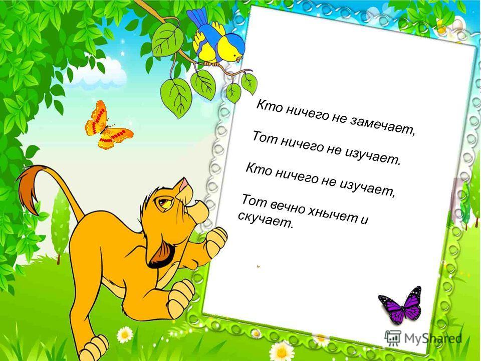 Кто ничего не замечает, Тот ничего не изучает. Кто ничего не изучает, Тот вечно хнычет и скучает.