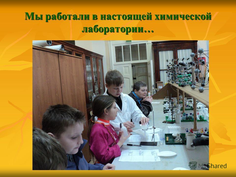 Мы работали в настоящей химической лаборатории…