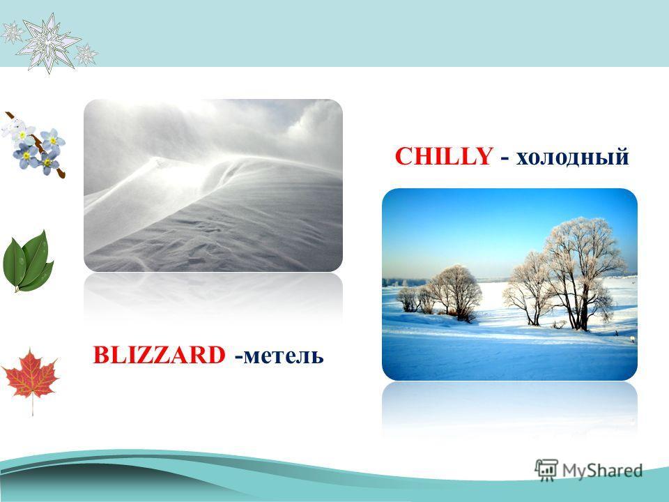 BLIZZARD -метель CHILLY - холодный