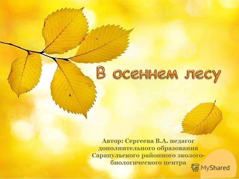 Автор: Сергеева В.А. педагог дополнительного образования Сарапульского районного эколого- биологического центра