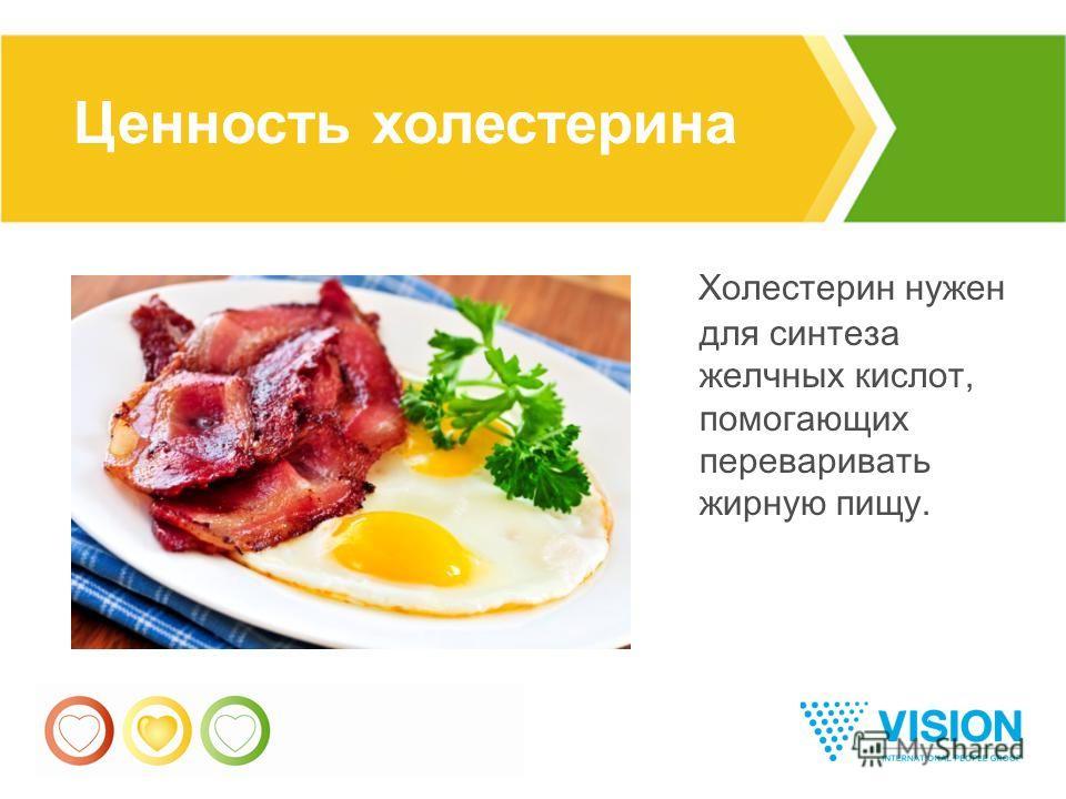 11 Холестерин нужен для синтеза желчных кислот, помогающих переваривать жирную пищу. Ценность холестерина