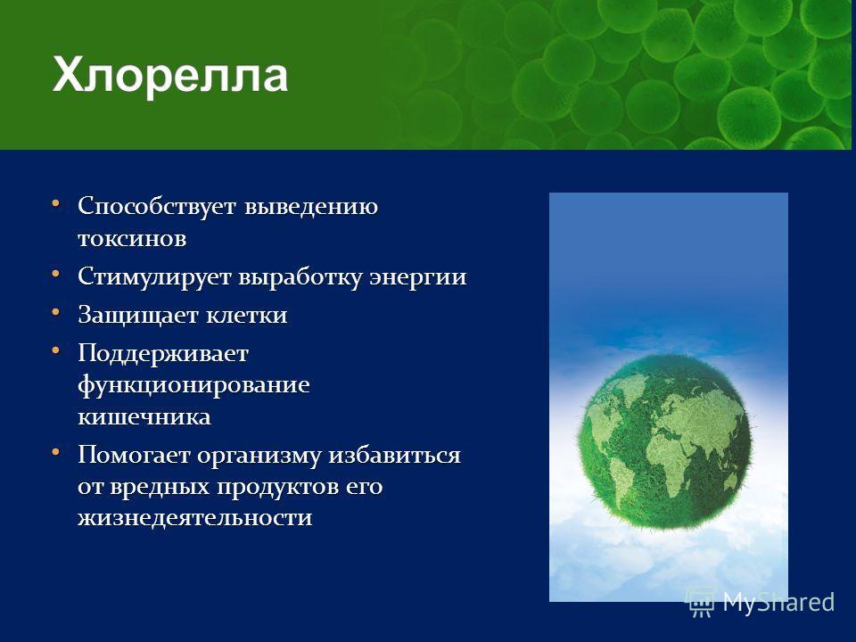 Способствует выведению токсинов Способствует выведению токсинов Стимулирует выработку энергии Стимулирует выработку энергии Защищает клетки Защищает клетки Поддерживает функционирование кишечника Поддерживает функционирование кишечника Помогает орган