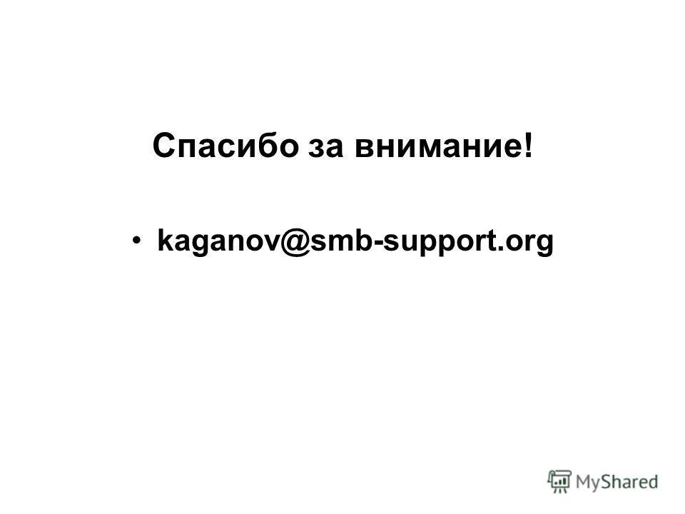 Спасибо за внимание! kaganov@smb-support.org